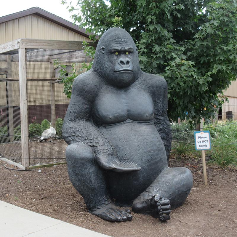 DZ-Gorilla(35).JPG