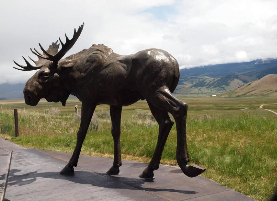 Have you ever seen such a beautiful moose statue?