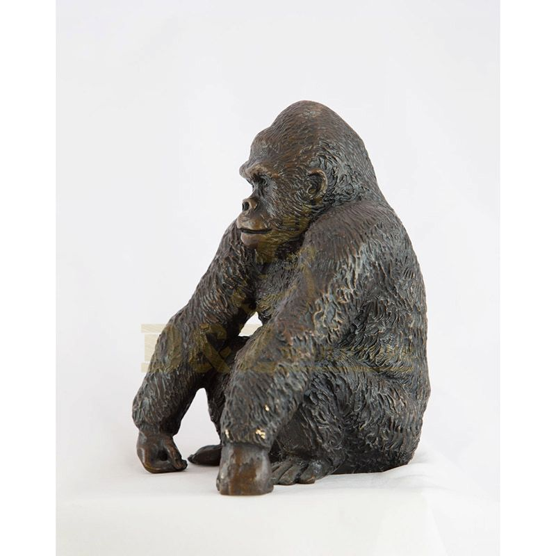 DZ-Gorilla(22).jpg