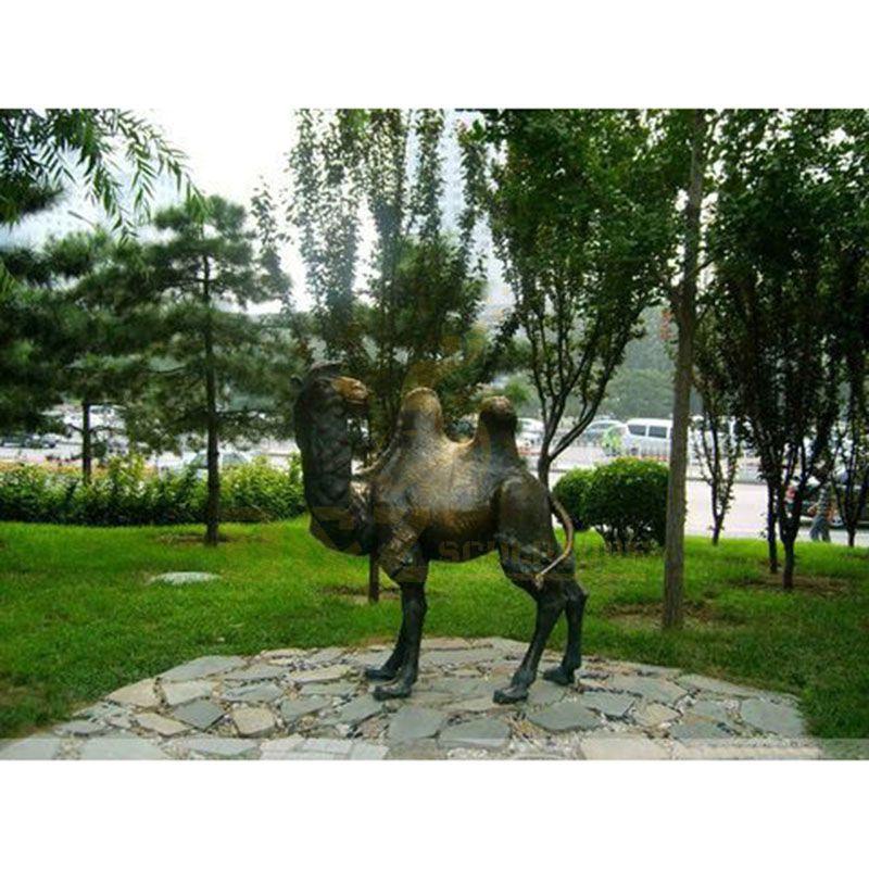 DZ-Camel(42).jpg
