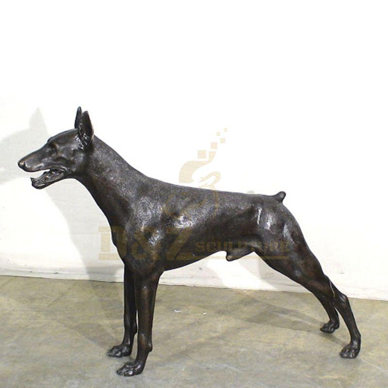 DZ-Dog(43).jpg